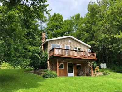 Ellicott Single Family Home A-Active: 5464 Route 242 East