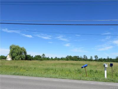 Niagara County Residential Lots & Land A-Active: 6141 Old Beattie Road