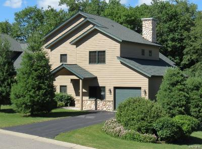 Ellicottville Condo/Townhouse A-Active: 109 Thornbush Road