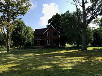 Westfield Single Family Home A-Active: 6566 South Portage Road