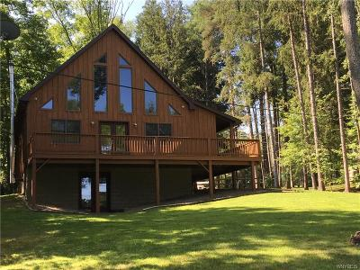 Allegany County, Cattaraugus County Single Family Home A-Active: 8714 County Road 49