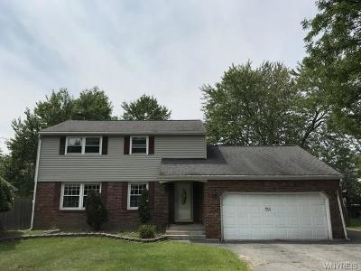 Grand Island Single Family Home A-Active: 750 Baseline Road
