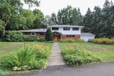 Orleans County, Monroe County, Niagara County, Erie County Single Family Home A-Active: 8620 Sisson Highway
