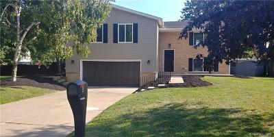 Niagara County Single Family Home A-Active: 8 Bob O Link Lane