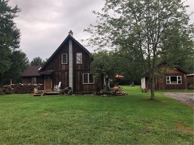 Niagara County Single Family Home A-Active: 8516 Townline Road