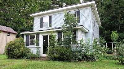Cattaraugus Single Family Home A-Active: 110 Waverly Street