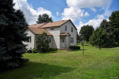 Niagara County Single Family Home A-Active: 3728 North Ridge Road