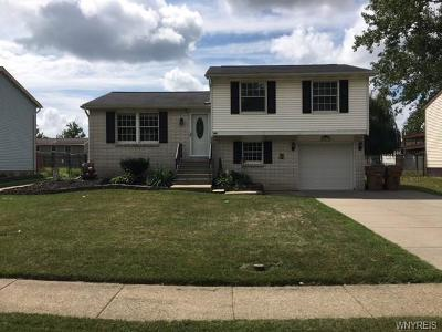 Cheektowaga Single Family Home A-Active: 167 Losson Road