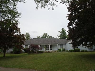 Amherst Single Family Home A-Active: 131 Chapel Woods