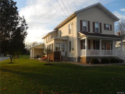 Genesee County Multi Family 2-4 A-Active: 91 Lake Street