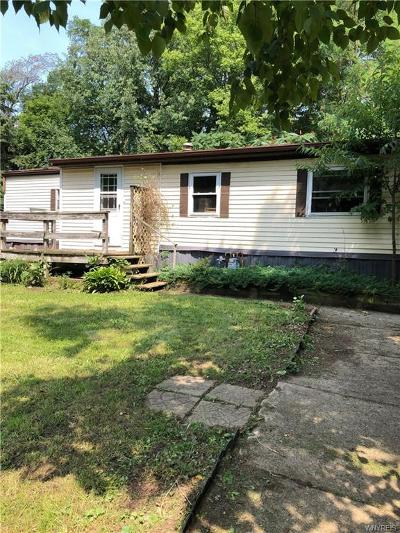 Genesee County Single Family Home A-Active: 7151 Pine Street