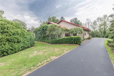 Niagara County Single Family Home A-Active: 7072 Chestnut Ridge Road