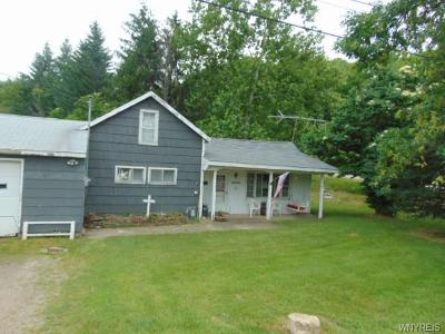 Single Family Home A-Active: 10230 Route 39