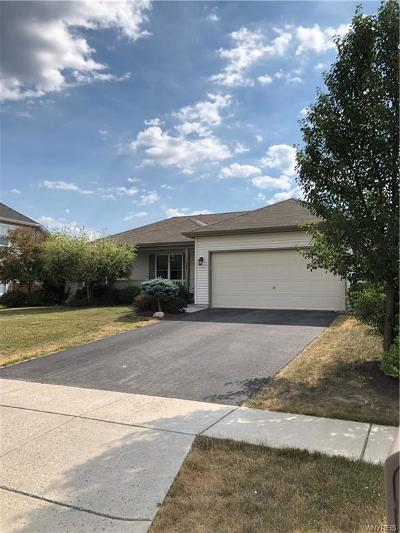 West Seneca Single Family Home A-Active: 100 Chancellor Lane