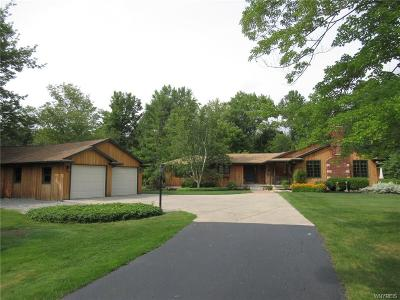 Grand Island Single Family Home A-Active: 3077 Love Road