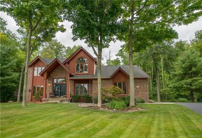 Orchard Park Single Family Home C-Continue Show: 425 Independence Drive