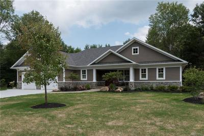 Aurora Single Family Home A-Active: 18 Reed Hill Drive