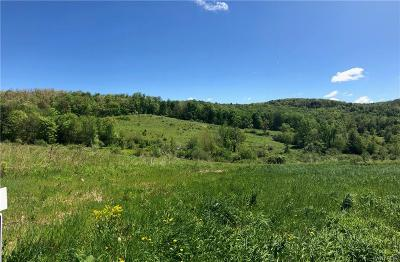 Hinsdale Residential Lots & Land For Sale: 00 Union Valley Rd Road
