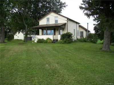 Orangeville Single Family Home A-Active: 4135 State Route 20a Road West