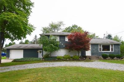 Lancaster Single Family Home A-Active: 556 Ransom Road