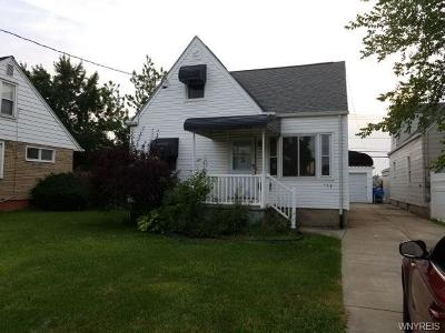 Buffalo Single Family Home A-Active: 998 Delaware Road