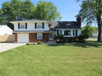 Grand Island Single Family Home A-Active: 209 Hennepin Road