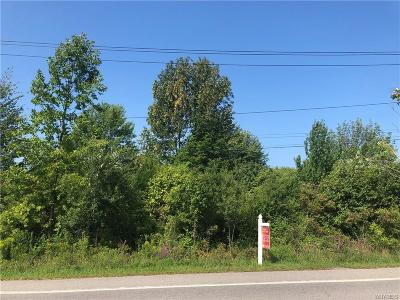 Orchard Park Residential Lots & Land A-Active: V/L Transit Road
