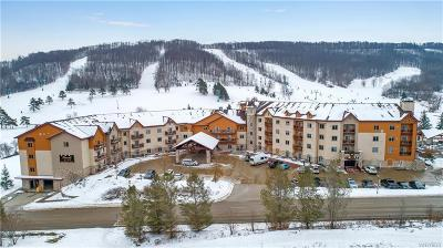 Ellicottville Condo/Townhouse A-Active: 517/519-2 Tamarack Club