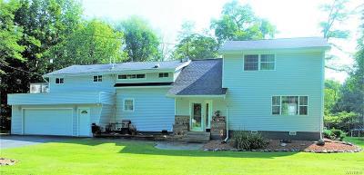 Angola Single Family Home A-Active: 8404 Lake Shore Road