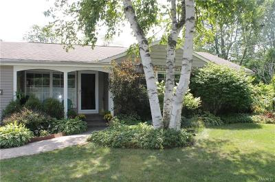 Single Family Home A-Active: 56 Parkview Drive