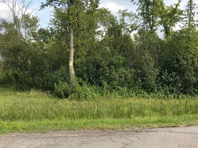 Grand Island Residential Lots & Land A-Active: V/L Love Road