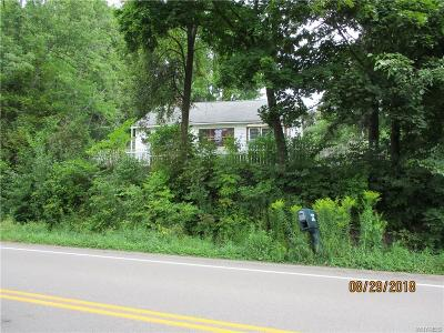 Cuba Single Family Home For Sale: 9670 N Shore Rd County Rt 7