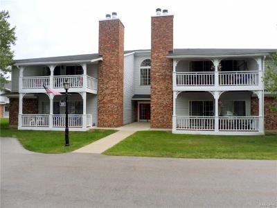 Erie County Condo/Townhouse A-Active: 1205 Youngs Road #C