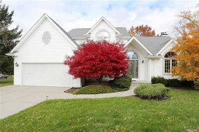 Grand Island Single Family Home A-Active: 99 Riverview Court