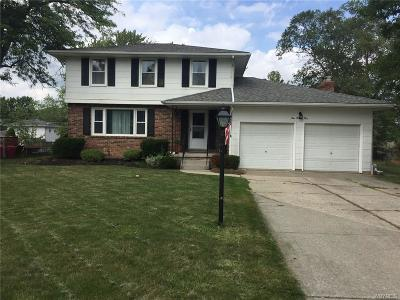 Grand Island Single Family Home A-Active: 125 Colonial Drive