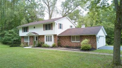 Orchard Park Single Family Home U-Under Contract: 75 Henning Drive