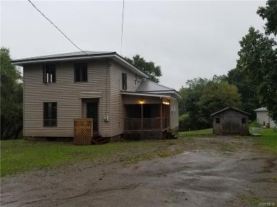 Cattaraugus Single Family Home A-Active: 8270 North Otto Road