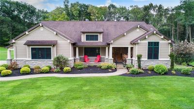 East Aurora Single Family Home For Sale: 1249 Big Tree Road