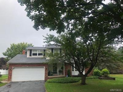 Elma Single Family Home A-Active: 410 Elma Meadow Lane