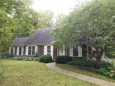 Orchard Park Single Family Home A-Active: 7981 Ellicott Road