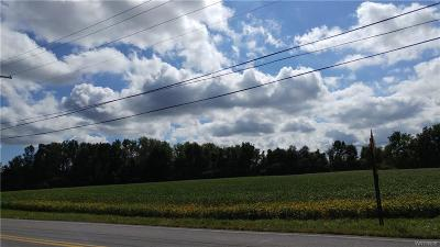 Genesee County Residential Lots & Land A-Active