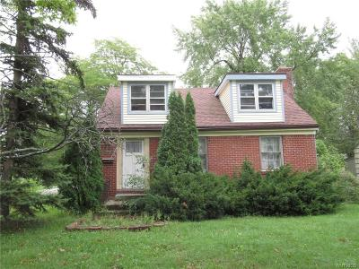 Grand Island Single Family Home A-Active: 1295 East Park Road