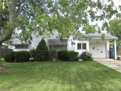 Grand Island Single Family Home A-Active: 1453 Red Jacket Road