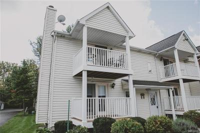 Amherst Condo/Townhouse A-Active: 4615 Chestnut Ridge Road #B