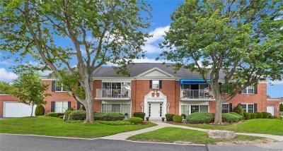 Amherst Condo/Townhouse A-Active: 2 Hickory Hill Road #E