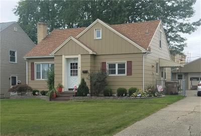 Cheektowaga Single Family Home A-Active: 22 Mapleview Road