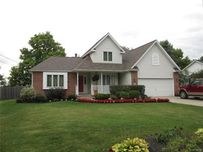 Orchard Park Single Family Home A-Active: 7680 Milestrip Road
