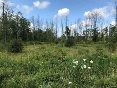 Angola Residential Lots & Land A-Active: V/L Eden Town Line Road