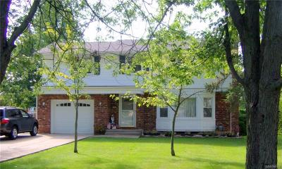 Grand Island Single Family Home A-Active: 898 Baseline Road