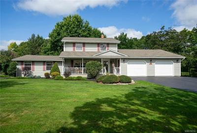 Erie County Single Family Home A-Active: 13790 Sanders Hill Road